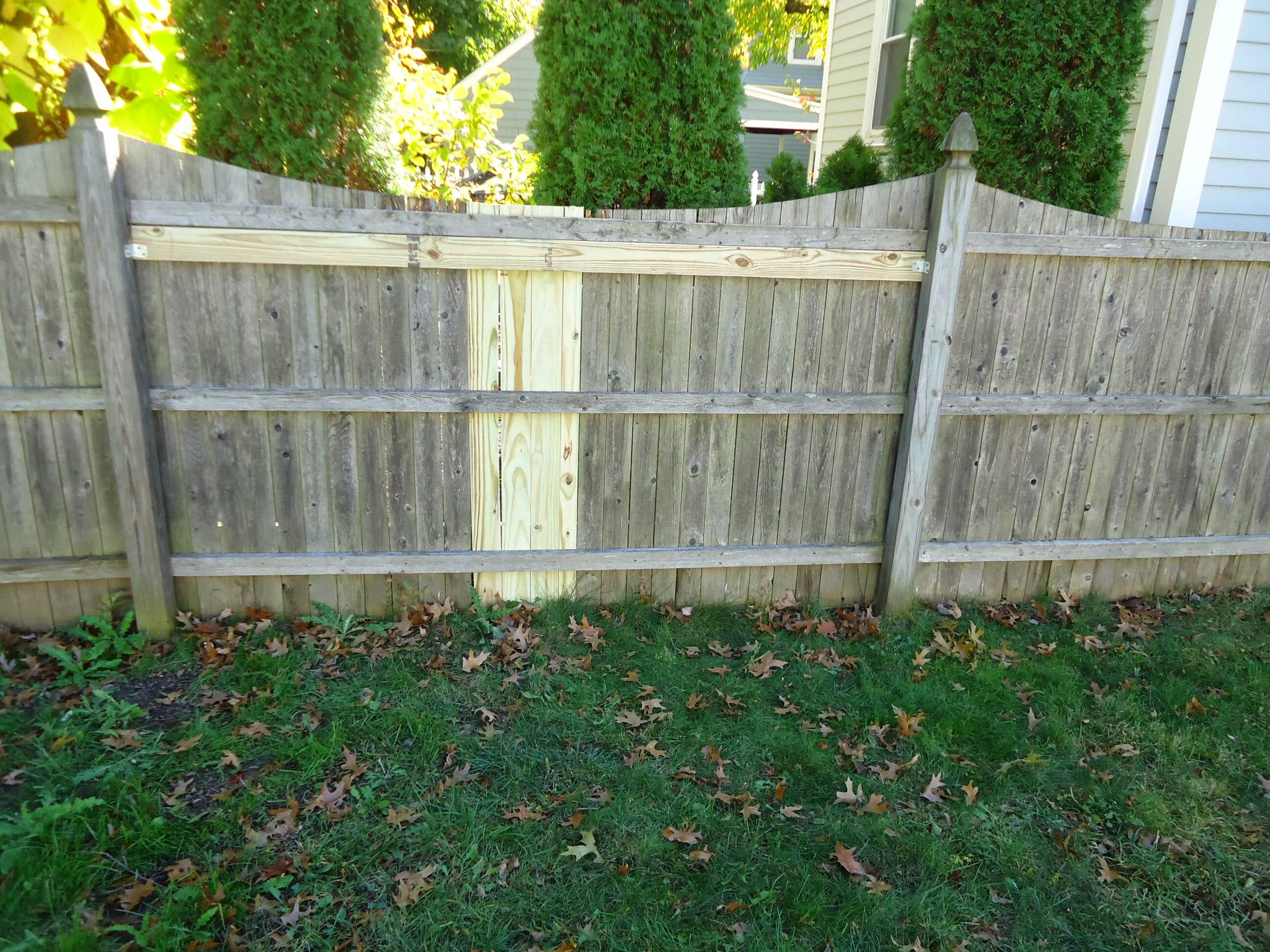 Yard Fencing Basics - VOTED BEST Tree Service in Knoxville ...